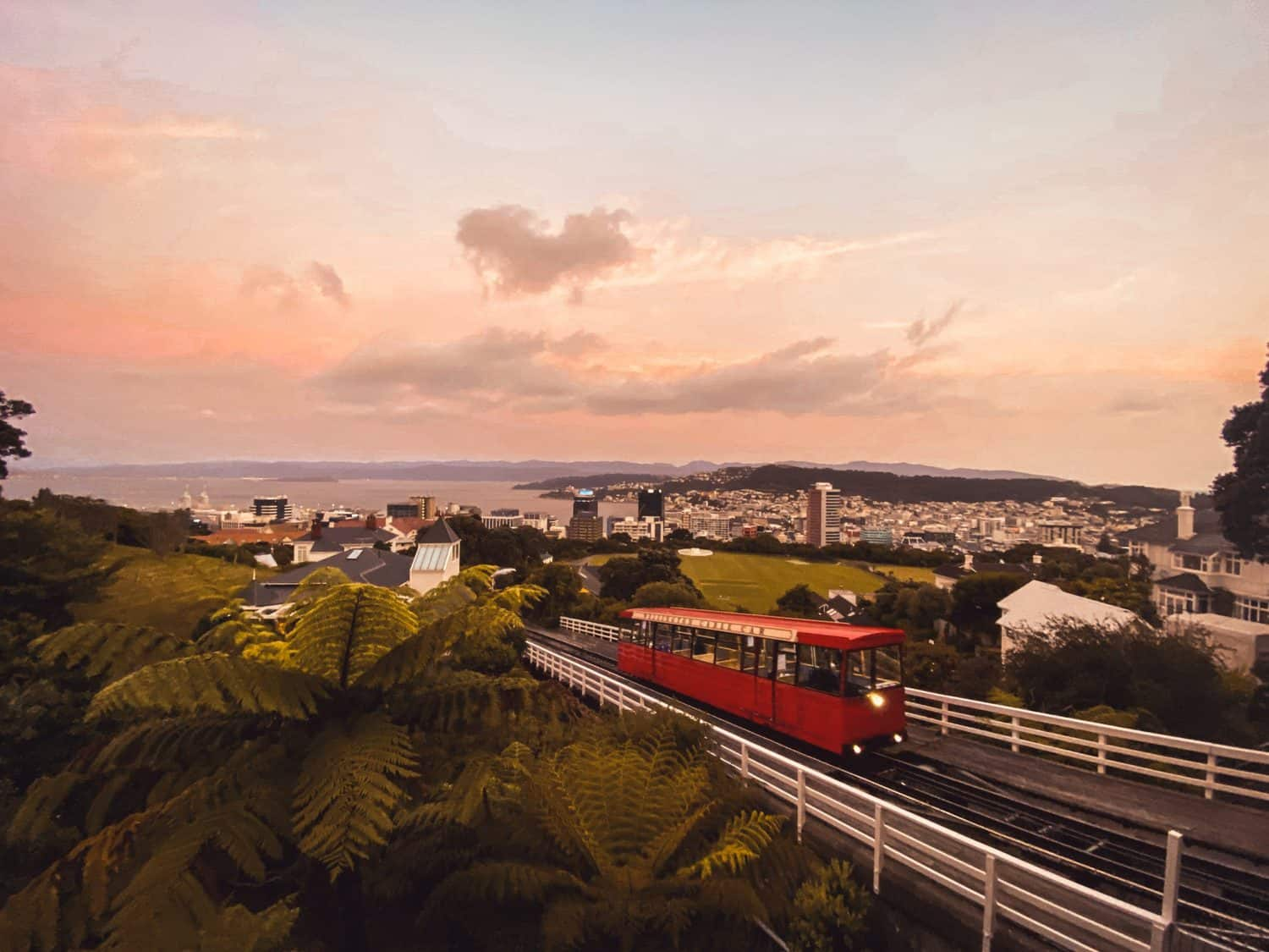 20 Things to Do in Wellington, New Zealand: Best Attractions & More
